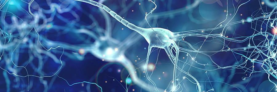 Neurological Institute | UPMC