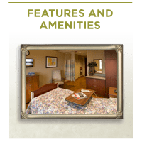 Features and Amenities